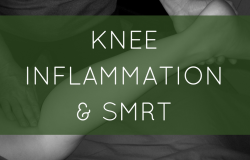 Knee Inflammation & SMRT
