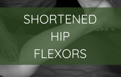 Shortened Hip Flexors